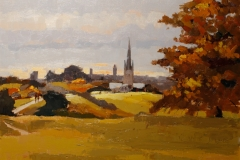 Artist Mo Teeuw - View of Norwich from Mousehold Heath 14x18 Oil on Canvas at Paint Out Norwich 2015